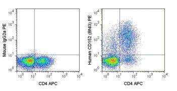CTLA-4 / CD152 Antibody (A18687)