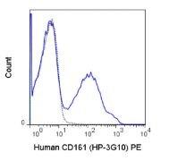 KLRB1 / CD161 Antibody (A18688)