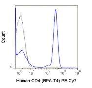 CD4 Antibody (A18706)