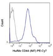 CD44 Antibody (A18709)