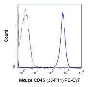 CD45 Antibody (A18710)