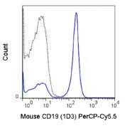 CD19 Antibody (A18716)