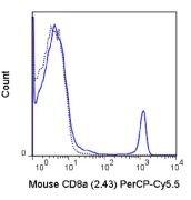 CD8 alpha Antibody (A18719)