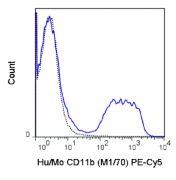 CD11b Antibody (A26002)