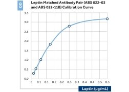 Leptin Antibody (ABS 022-03-02)