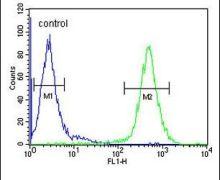 MCAD Antibody (PA5-24293)