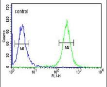 ACSM1 Antibody (PA5-26292)