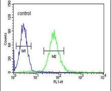 ADCY10 Antibody (PA5-25756)