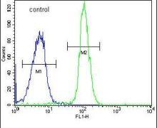 ADPRHL2 Antibody (PA5-26728)