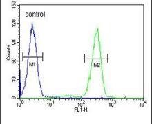 AFTPH Antibody (PA5-25674)