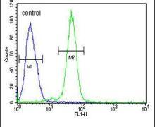 AGXT2 Antibody (PA5-26833)