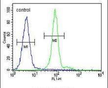 ALX4 Antibody (PA5-23890)