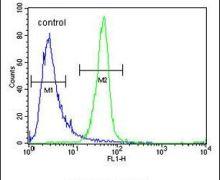 ANR52 Antibody (PA5-24295)