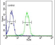 SMPDL3A Antibody (PA5-24899)