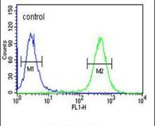 ATP4B Antibody (PA5-25105)