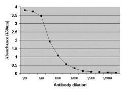 Rat Albumin Antibody (PA1-85142)