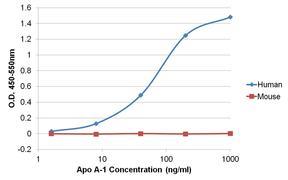 Apolipoprotein A1 Antibody (701239)