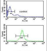 B3GALT6 Antibody (PA5-24932)