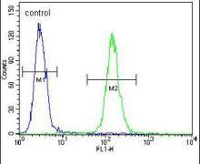 Mist1 Antibody (PA5-24145)