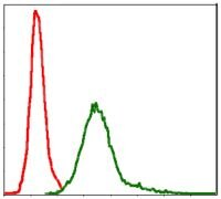 Survivin Antibody (MA5-17035)