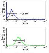 BLOC1S2 Antibody (PA5-25452)