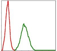 BMI-1 Antibody (MA5-15919)