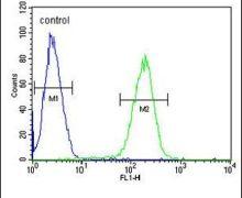 SFR1 Antibody (PA5-24555)
