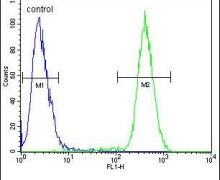 CAMLG Antibody (PA5-25779)