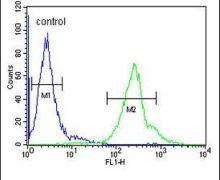 CCDC69 Antibody (PA5-25380)