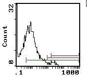c-Kit Antibody (MA1-70079)