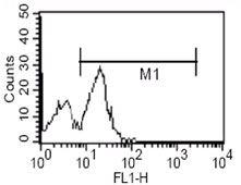 CD14 Antibody (MA5-14773)