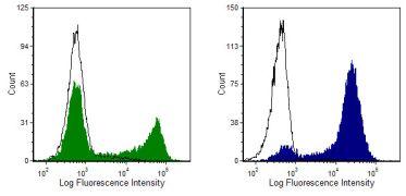 CD8 alpha Antibody (MA5-17399)