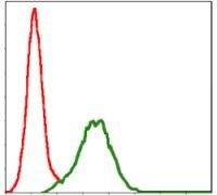 CD9 Antibody (MA5-17049)