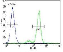 CEP164 Antibody (PA5-24461)