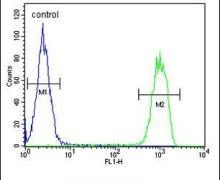 MCMBP Antibody (PA5-24664)