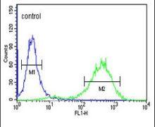 Claudin 18 Antibody (PA5-26237)