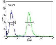 Claudin 7 Antibody (PA5-23689)