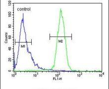 CLEC2B Antibody (PA5-24704)