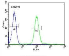 COQ7 Antibody (PA5-25774)