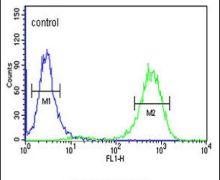 CTC1 Antibody (PA5-24695)
