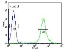 CRIP1 Antibody (PA5-24643)