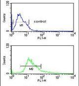 alpha Catenin Antibody (PA5-13526)