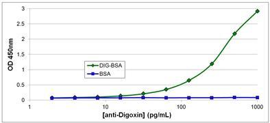Digoxin Antibody (MA5-14747)