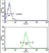 ELOVL6 Antibody (PA5-13455)