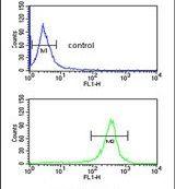 EXTL3 Antibody (PA5-26058)