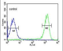 FAAH2 Antibody (PA5-25074)