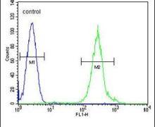 FANCC Antibody (PA5-26530)