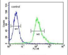 FGFBP3 Antibody (PA5-25539)