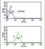 FKBP10 Antibody (PA5-14272)
