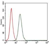 c-Fos Antibody (MA5-17076)